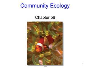 Community Ecology Chapter 56