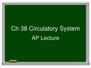 Ch 38 Circulatory System