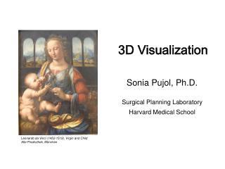 3D Visualization