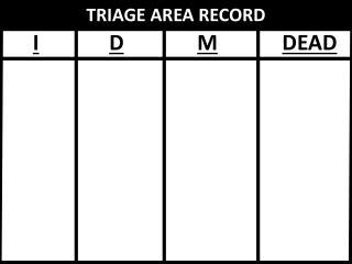 TRIAGE AREA RECORD
