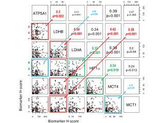 Biomarker H-score