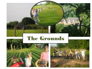 The Grounds