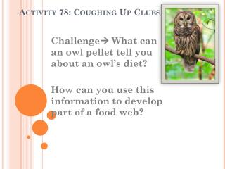 Activity 78: Coughing Up Clues