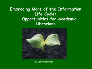Embracing More of the Information Life Cycle:     Opportunities for Academic Librarians