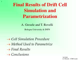 Final Results of Drift Cell Simulation and Parametrization