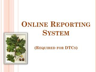 Online Reporting System (Required for DTCs)
