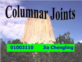 01003110       Jia Chengling