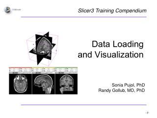 Data Loading  and Visualization