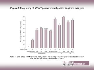 Figure 5  Frequency of  MGMT  promoter methylation in glioma subtypes