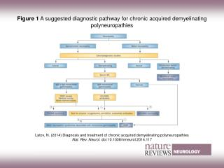 Figure 1  A suggested diagnostic pathway for chronic acquired demyelinating polyneuropathies