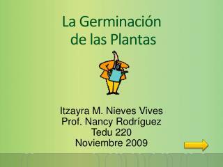La Germinaci n  de las Plantas