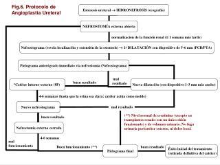 Fig.7.Estenosis ureteral tras transplante renal