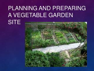 Planning and Preparing a Vegetable Garden Site