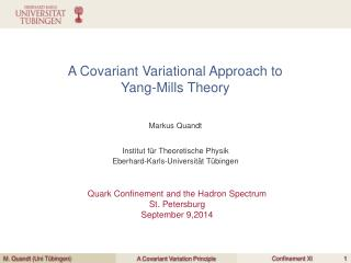 A Covariant Variational Approach to  Yang-Mills Theory