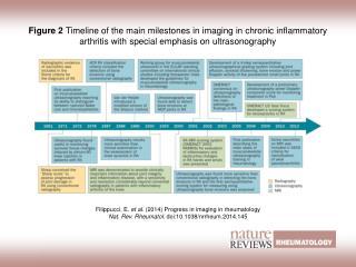 Filippucci, E.  et al. (2014)  Progress in imaging in rheumatology