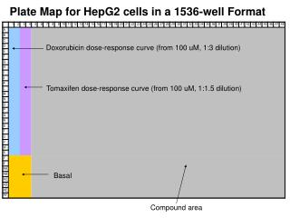 Plate Map for HepG2 cells in a 1536-well Format