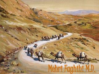 Mehri Faghihi M.D.