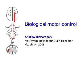 Biological motor control