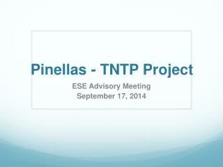 Pinellas - TNTP Project