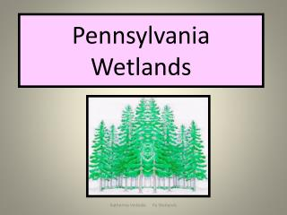Pennsylvania Wetlands