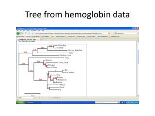 Tree  from hemoglobin data