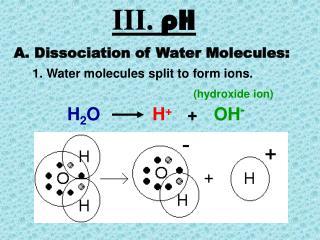 III.  pH