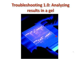 Troubleshooting 1.0: Analyzing results in a gel