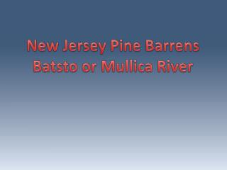 New Jersey Pine Barrens Batsto  or Mullica River