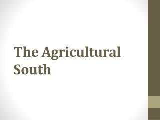 The Agricultural South