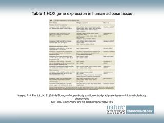 Table 1  HOX gene expression in human adipose tissue