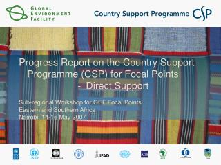 Progress Report on the Country Support Programme (CSP) for Focal Points Direct Support
