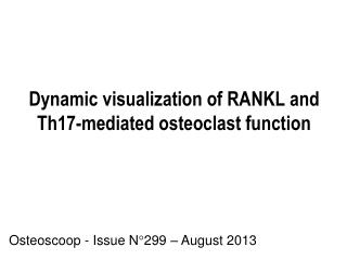 Dynamic  visualization of RANKL and Th17-mediated osteoclast function