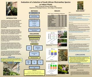 Evaluation of a Selection of South African  Plectranthus Species as Indoor Plants