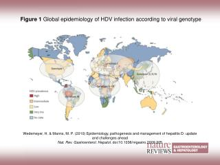 Figure 1 Global epidemiology of HDV infection according to viral genotype