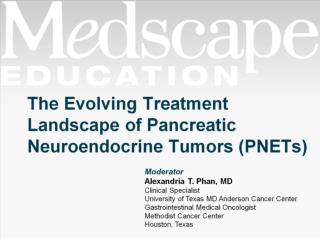 The Evolving Treatment Landscape of Pancreatic Neuroendocrine Tumors (PNETs)