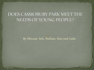 DOES CASSIOBURY PARK MEET THE NEEDS OF YOUNG  PEOPLE?