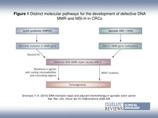 Figure 1  Distinct molecular pathways for the development of defective DNA MMR and MSI-H in CRCs