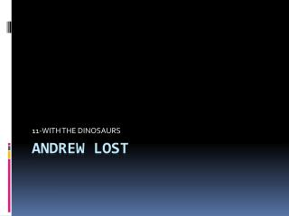 ANDREW LOST