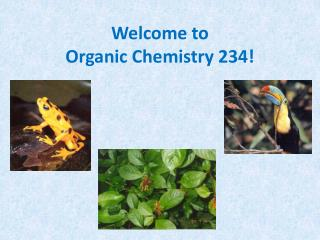Welcome to  Organic Chemistry 234!