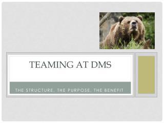 Teaming at DMS