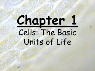Chapter 1 Cells: The Basic Units of Life