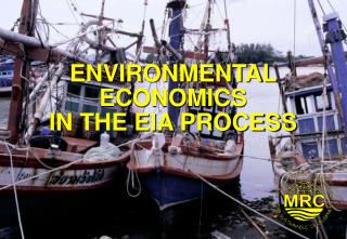 ENVIRONMENTAL ECONOMICS IN THE EIA PROCESS