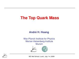 The Top Quark Mass