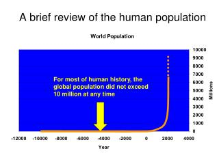 A brief review of the human population