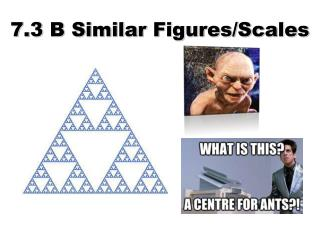 7.3 B Similar Figures/Scales