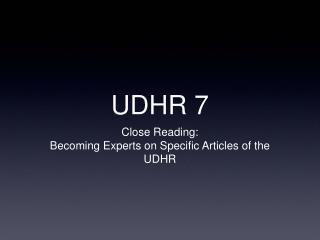 UDHR 7