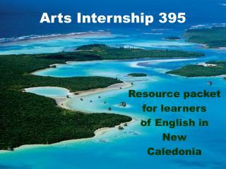 Arts Internship 395