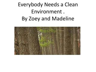Everybody  N eeds  a  Clean  Environment . By  Zoey and  Madeline