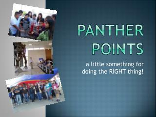Panther points