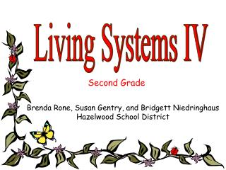 Living Systems IV